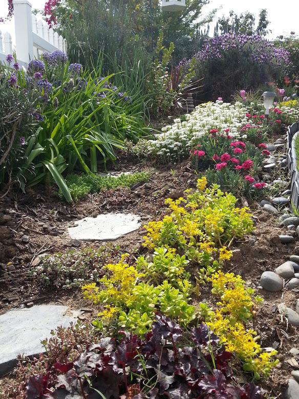garden spring2